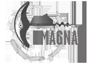 Logo di I Magnati